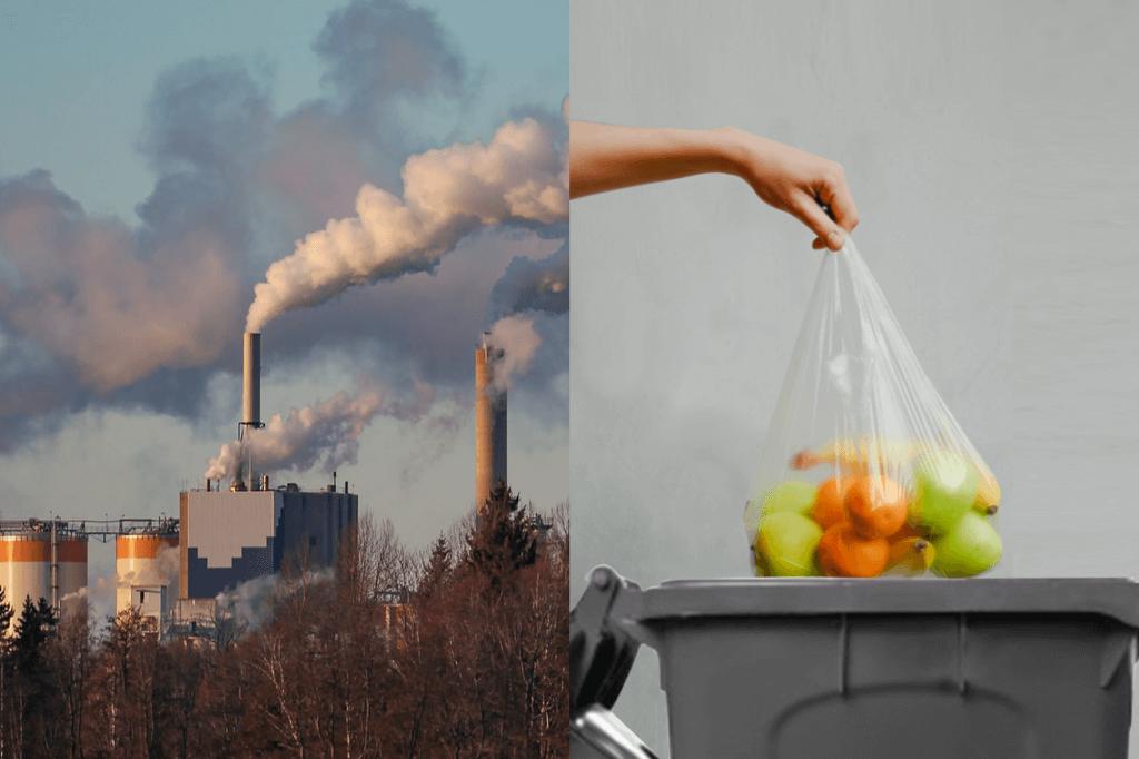 Photo représentant le gaspillage alimentaire