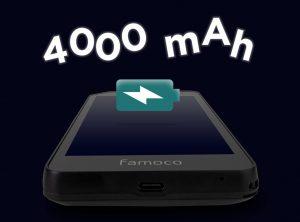 Batterie amovible et longue durée terminal professionnel